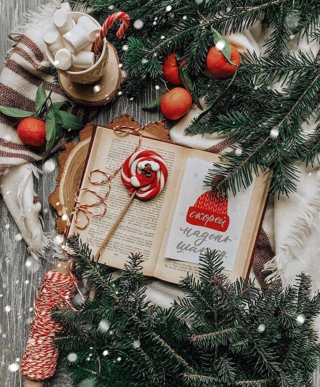 C H R I S T M A S Christmashype Fotos Y Videos De Instagram Christmas Mood Christmas Aesthetic Christmas Decorations