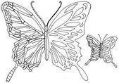 Photo of Half-skeleton-half-alive butterfly tattoo design by littlenatnatz101 -… –  Hal…