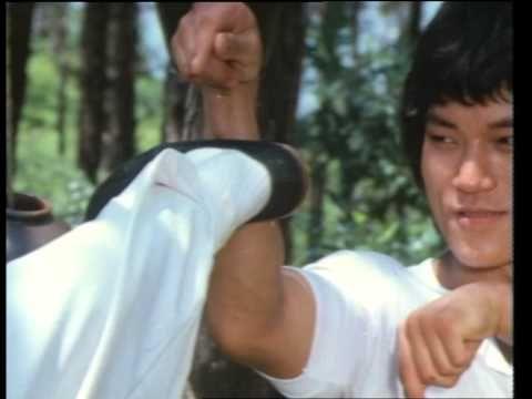 Wu Tang Collection Dragon The Hero The Kung Fu Wu