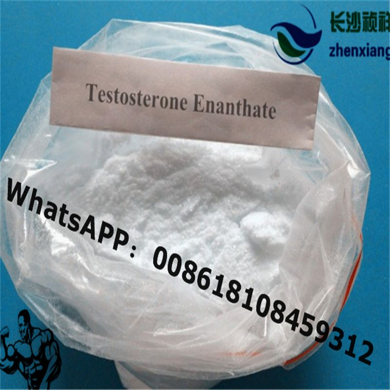 Testosterone Enanthate Available: Purity 99 8% Testosteorne