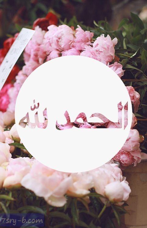 صور الحمد لله صور مكتوب عليها الحمد لله خلفيات ورمزيات الحمد لله جميلة وجديدة Islam Beliefs Beautiful Islamic Quotes Islam
