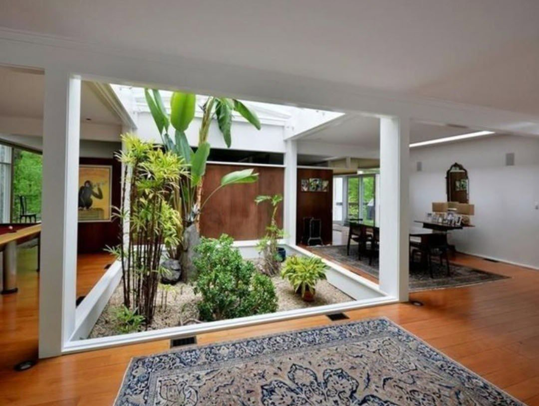 Residential Indoor Plant Service for Homes   INSIDE PLANTS ...