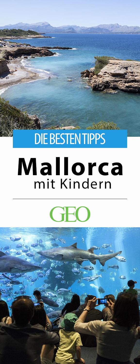 Experimenta Mallorca con niños: consejos y direcciones