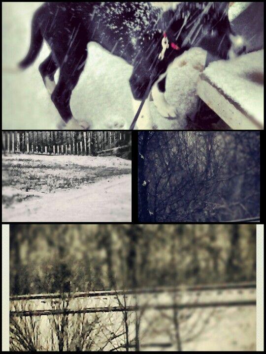 Winter time pics