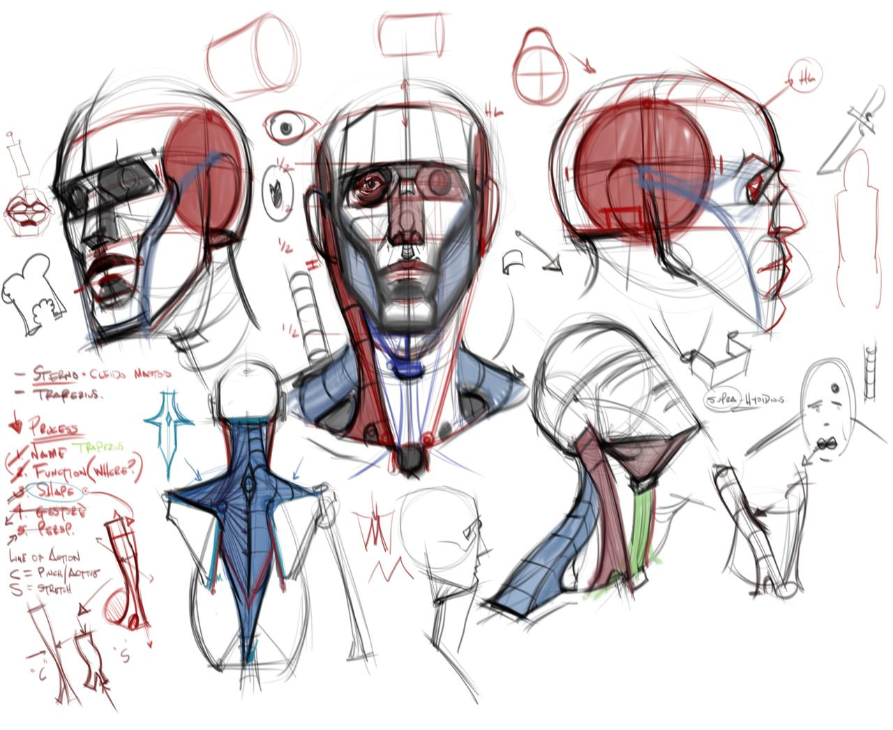 Reference Images for Artists | criminy: Steve Hampton: Figure Drawing: Design...