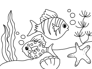 free printable Fish and sea star coloring book for kids