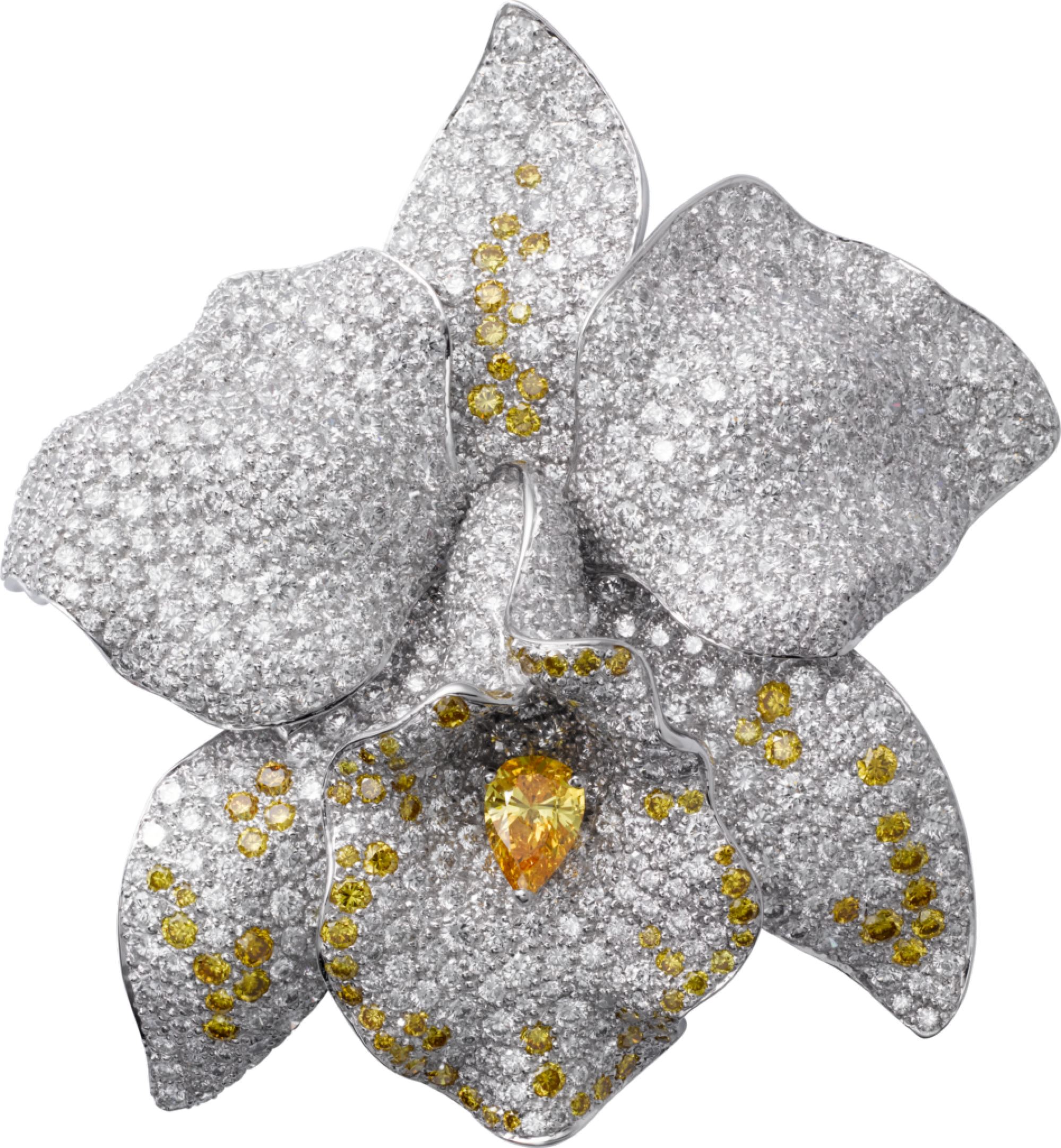 collections par sapphires es orchid white d jewelry categories ca gold caresse cartier brooch brooches en broochwhite