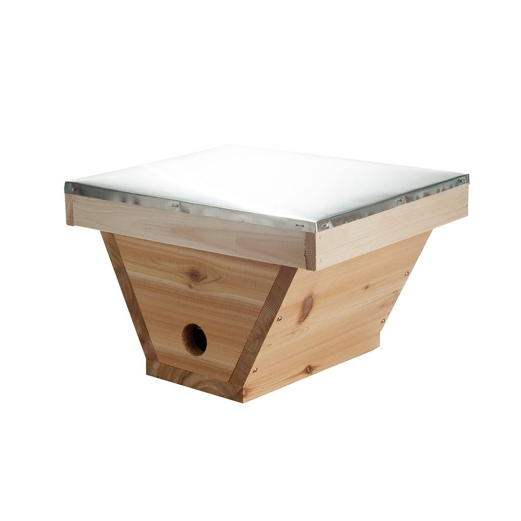 Superieur Top Bar Hive Nucleus Box From Bee Thinking