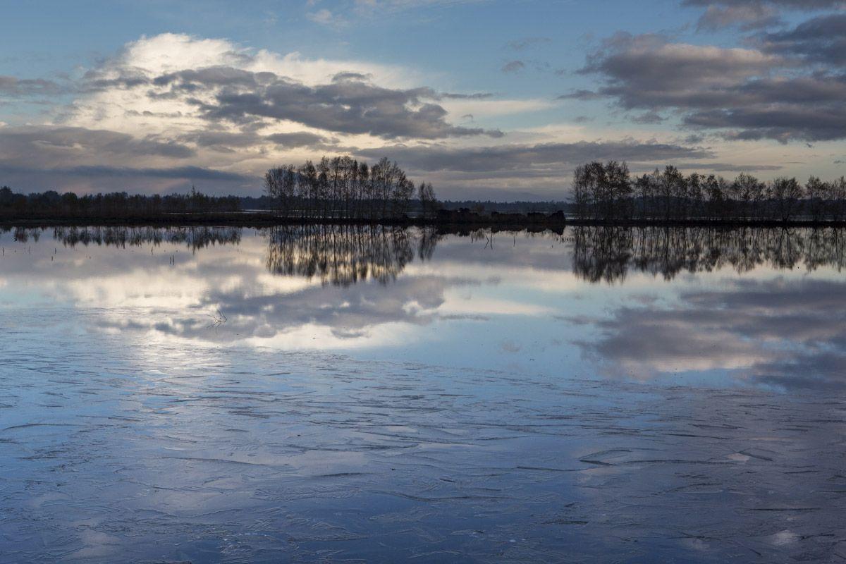Het was een koud weekeinde, 27 en 28 oktober. En dat leidde zelfs tot een laagje ijs. Hier het Bargerveen. Foto: @KarinBroekhuijsen