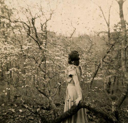 Black & white photo in woods...