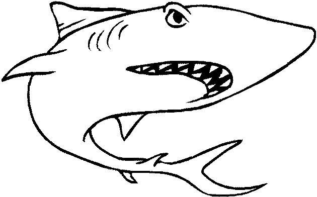 Back To Coloring Pages Sharks - http://www.coloringoutline.com/back ...