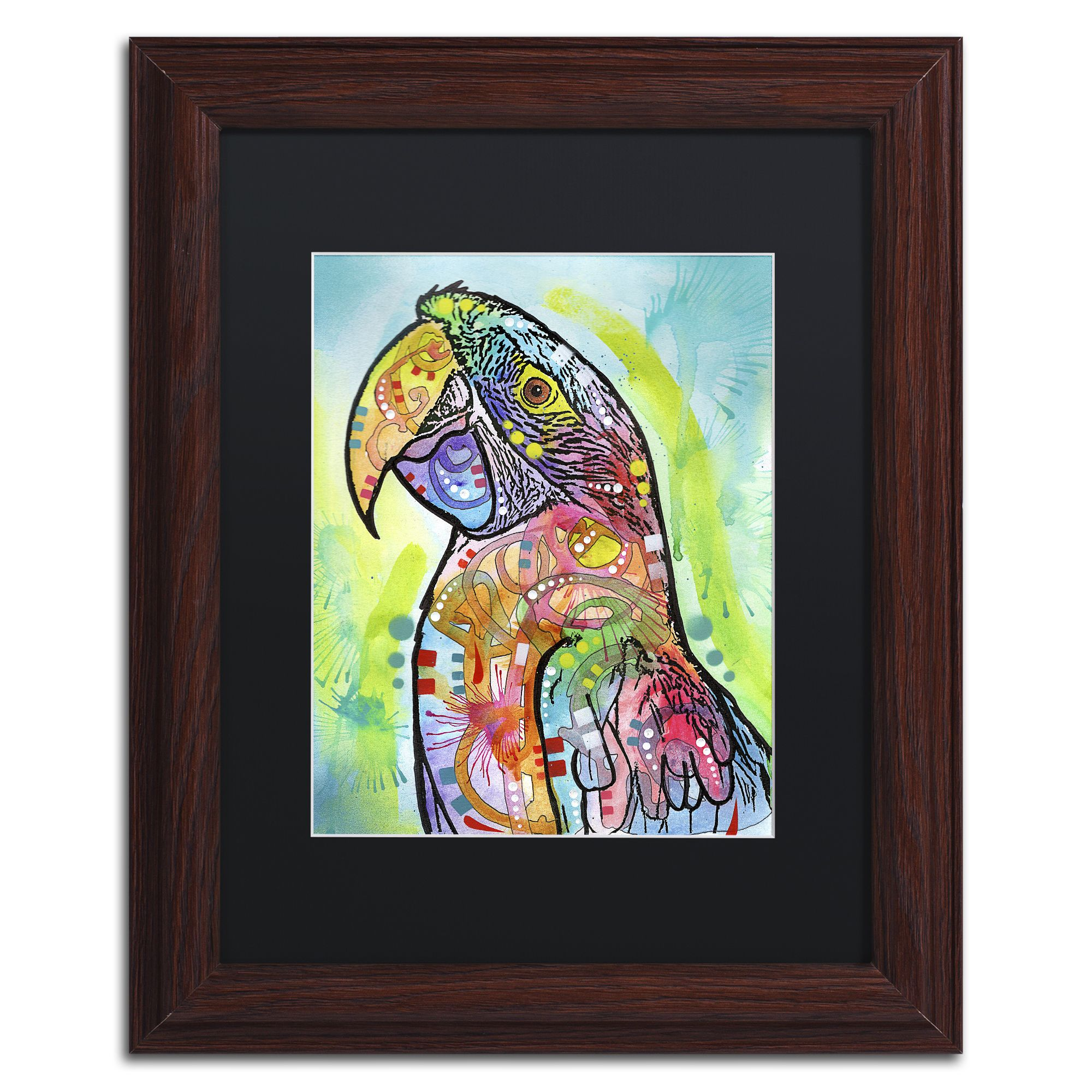 trademark fine art macaw canvas art by dean russo black matte wood frame assorted - Wood Frames For Canvas Paintings
