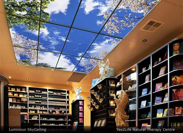 The sky factory custom ceiling art uses ceiling tiles to create the sky factory brings nature indoors with virtual windows and sky ceilings mozeypictures Images