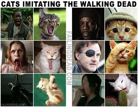 The Walking Dead season 4 funny memes