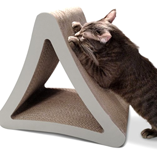 Cat Vertical Scratching