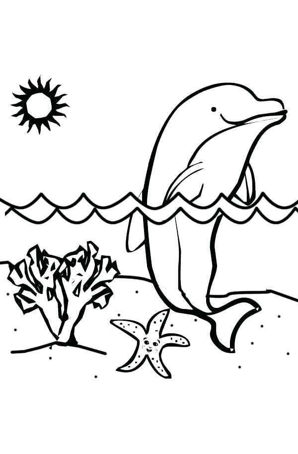Coloriage magique dauphin imprimer coloriage de dauphins coloriages pour enfants coloriage - Images dauphins a imprimer ...