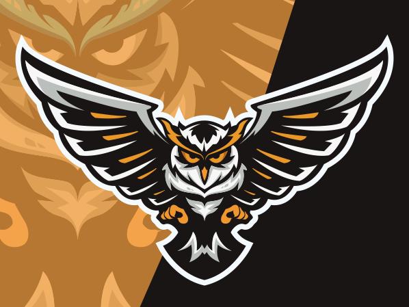Owl Esport Logo Gaming Teams Di 2020 Binatang Logo Keren Dan
