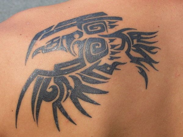 Albatross Chest Tattoo