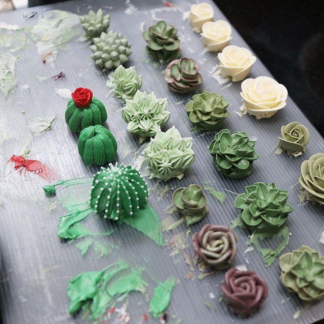 🌵🌿🌹 #다육이 #플라워케이크 #케이크 #나나케이크 #nanacake #nanaclass #cactus #succulent #buttercream #cakes #nanaflowercake.com