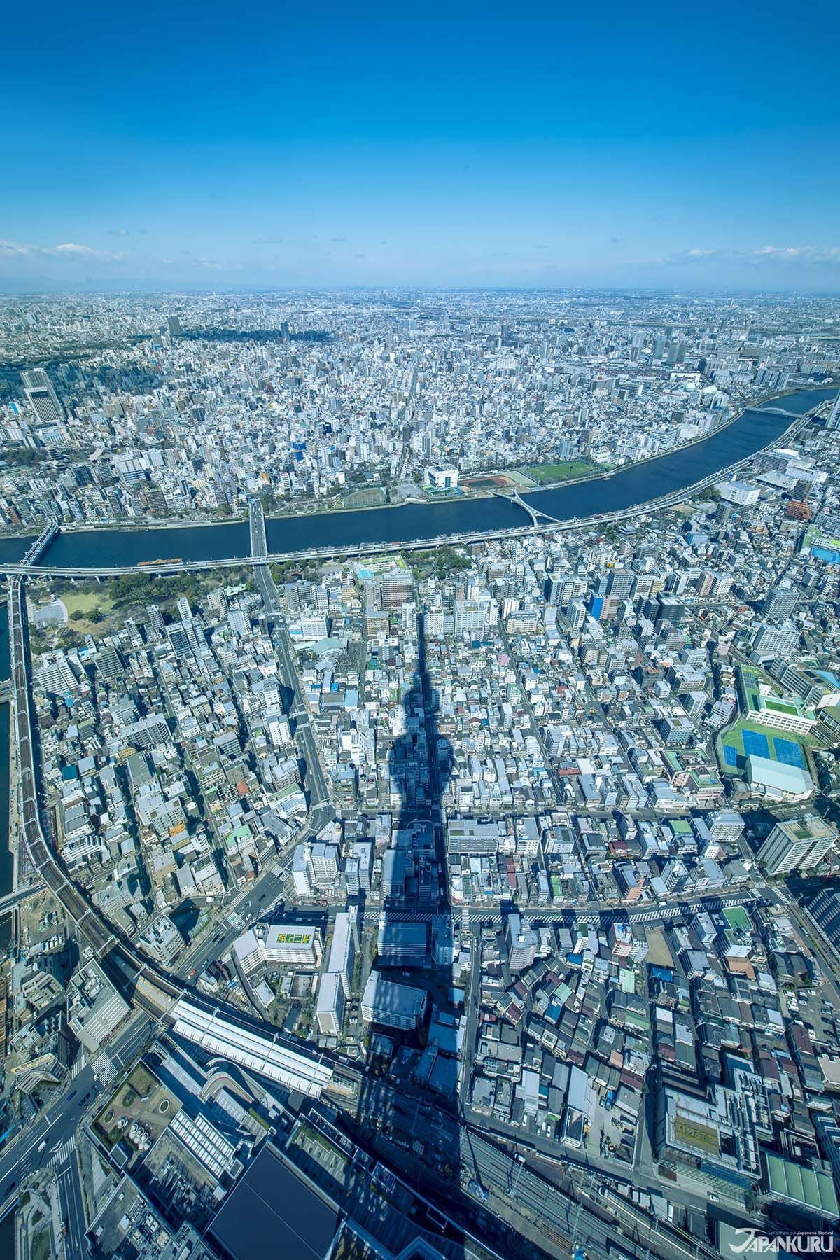 As spring brings great weather and beautiful sakura blooms to the city. it's the perfect time to check out Tokyo's most … in 2020 | Tokyo ...