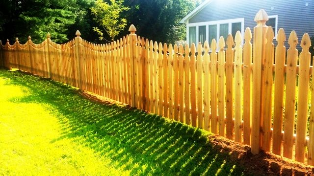 Scalloped Gothic Wood Picket Fence With Gothic Post Caps Wood Picket Fence Wood Fence Northern White Cedar