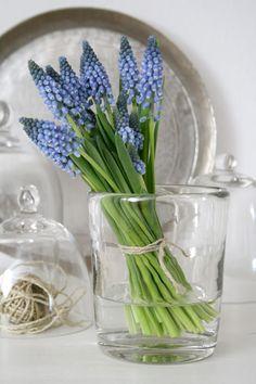 #inspiration - #styling - #interieur - #wonen - #decoratie - #aankleding - #wedding - #bloom - #irisdiamant  www.irisdiamant.nl/contact