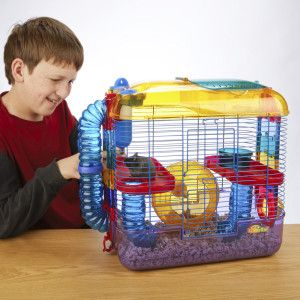 Kaytee Crittertrail Two Level Habitat Pets Hamster Care Habitats