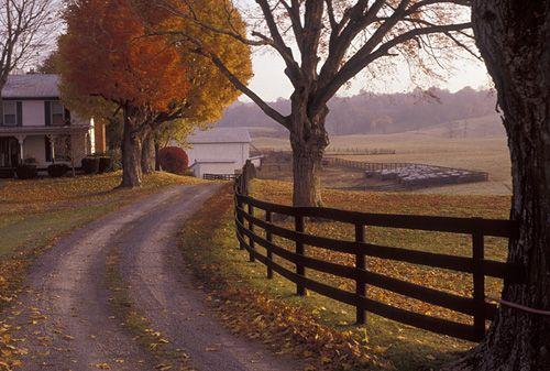 These 10 Mind-Blowing Sceneries Totally Define West Virginia #westvirginia