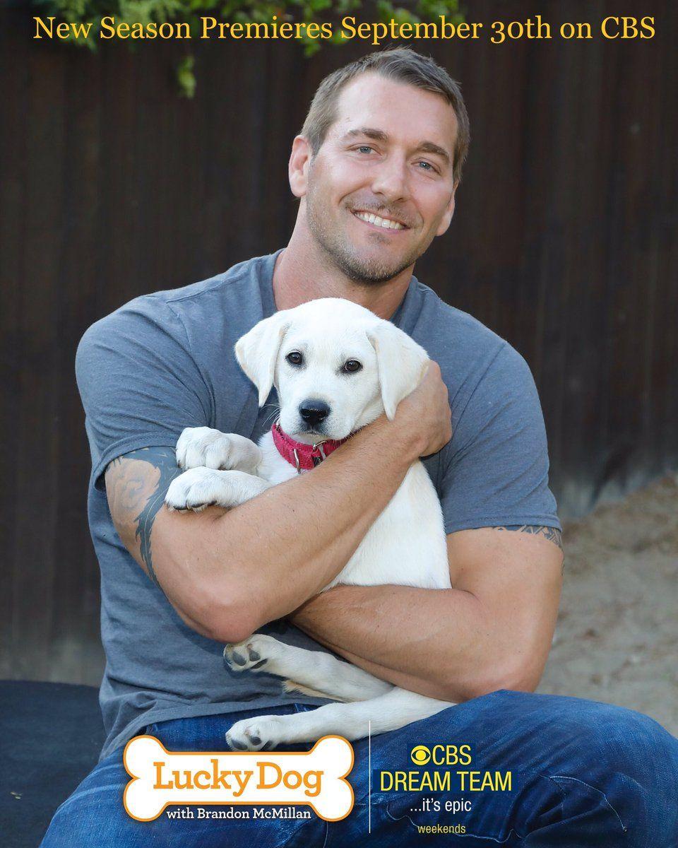 Brandon Mcmillan On Twitter Quot All New Season Of Lucky Dog