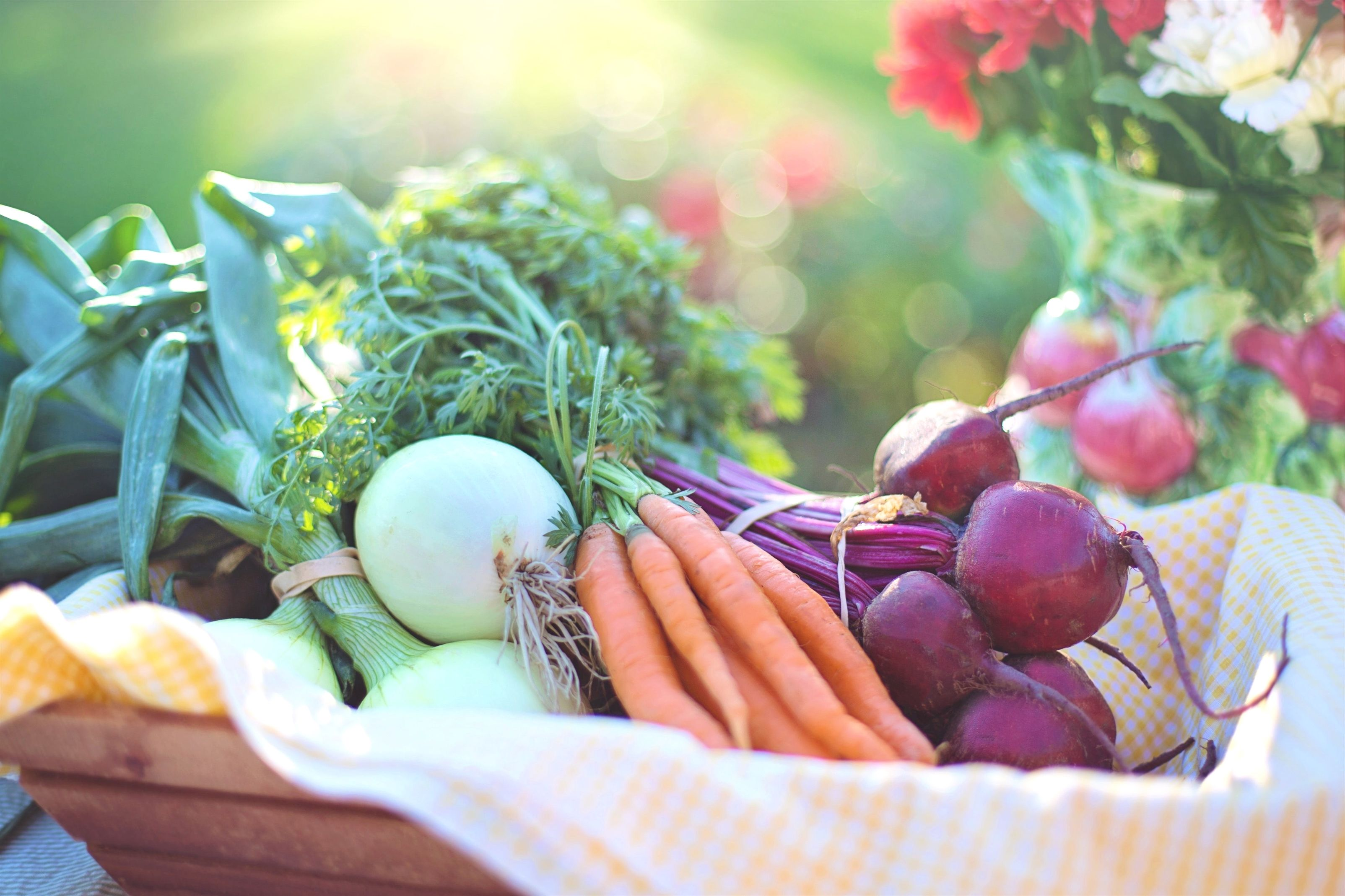 How To Grow A Garden With Minimal Space Vegan Nutrition Eating