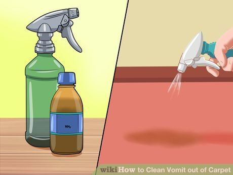 How To Clean Vomit Out Of Carpet With Pictures Carpet Cleaning Vomit