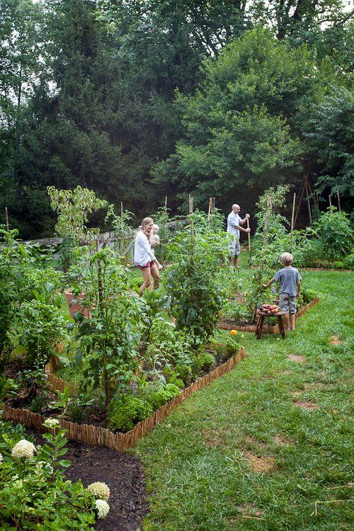 Our New Kitchen Garden Plans