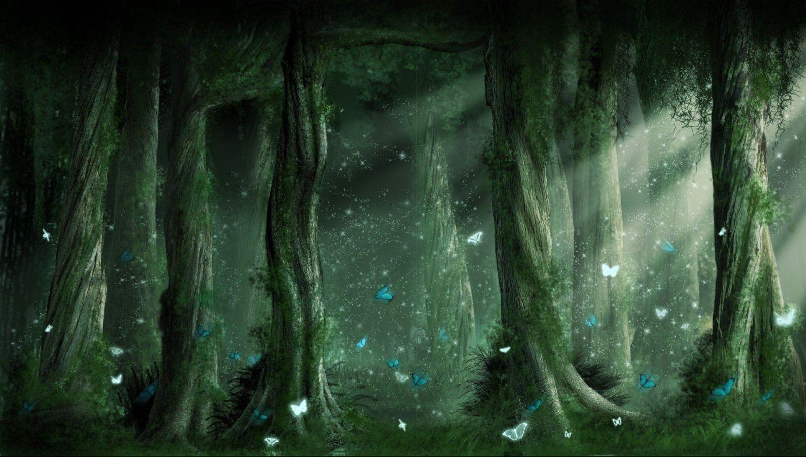 fantasy forest tree animals night moon art HD wallpaper