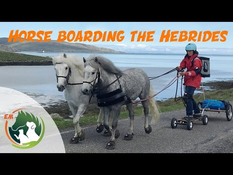 Horse boarding the Outer Hebrides