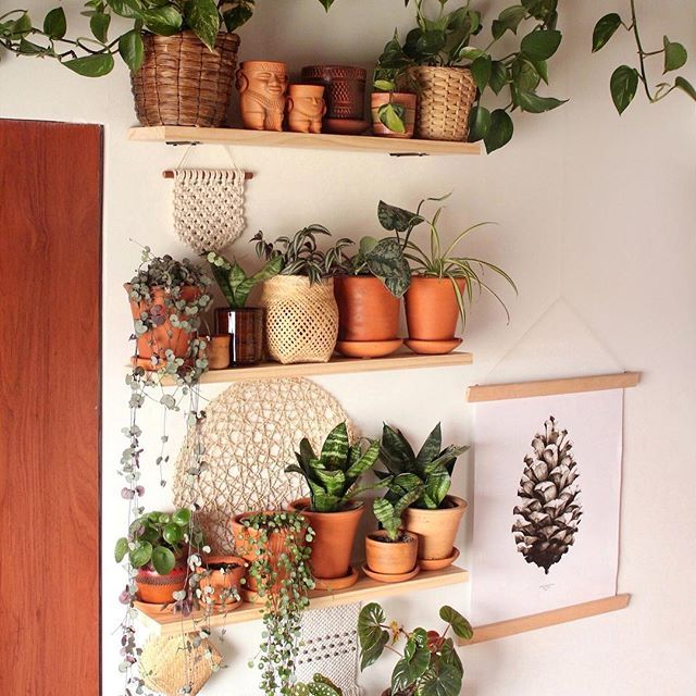 Photo of 17 Amazing Vertical Garden Ideas for Your Small Space