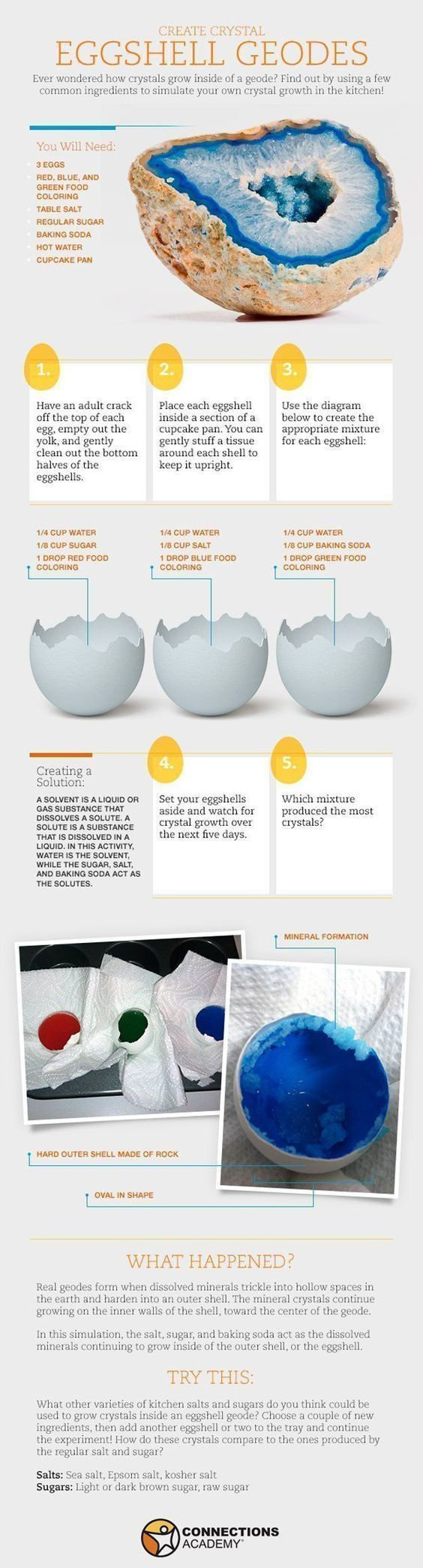 awesome science project for home schooling. Have to scroll down ...