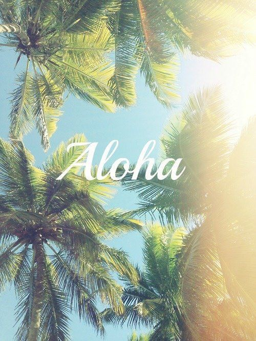 Zimmermanngoesto Hawaii Aloha Iphone Wallpapers Wallpaper Backgrounds Summer