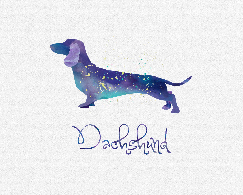 Pin de Danae Fragoso en T | Pinterest | Salchichas, Perros salchicha ...