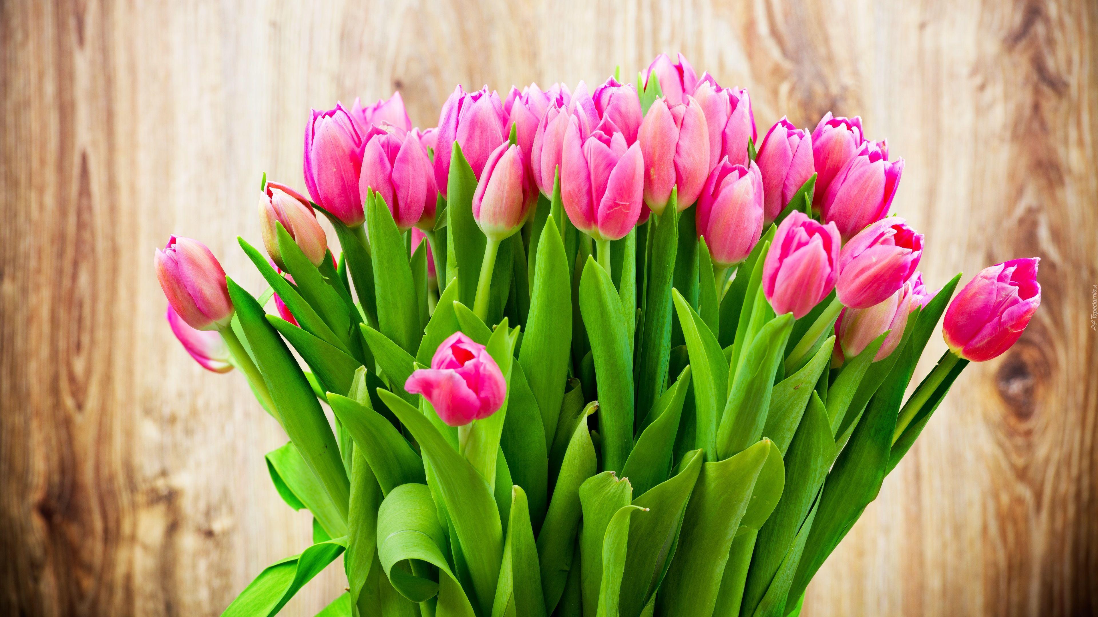 Bukiet Tulipany Rozowe Flower Wallpaper Tulips In Vase Tulips Flowers