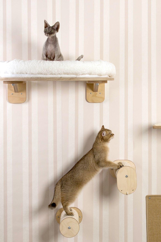 Katzen kletterwand climbing wall for cats made in - Kletterwand katze ...