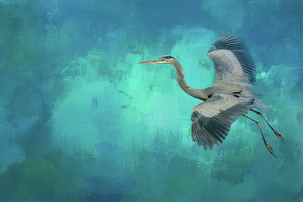 Sometimes it's best just to coast through those high energy situations...things will inevitably be calmer on the other side.   Original wildlife art by Jai Johnson  http://shop.jaiart.com/featured/coasting-blue-heron-bird-art-jai-johnson.html