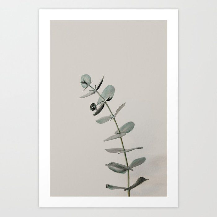Stretch: minimalist botanical eucalyptus Art Print by homelove | Society6