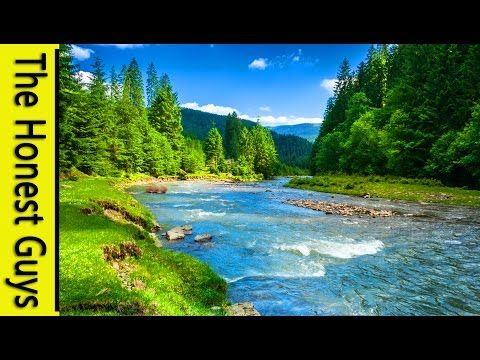 9 HOURS NATURE SOUNDS: RIVER IN THE SHIRE  Relaxation (NO MUSIC