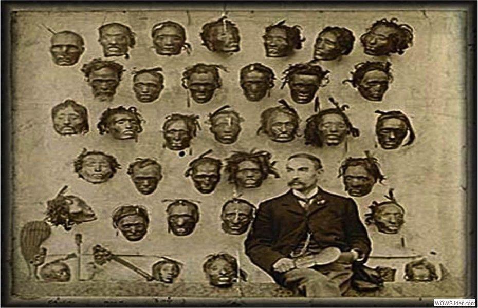 Affaire des têtes Maori