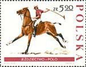stamp horse polo - Buscar con Google