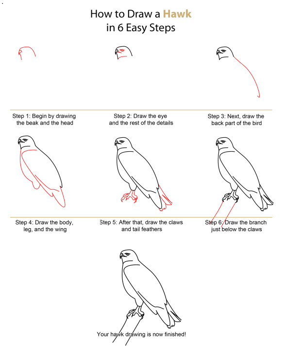 how to draw bird in the sky