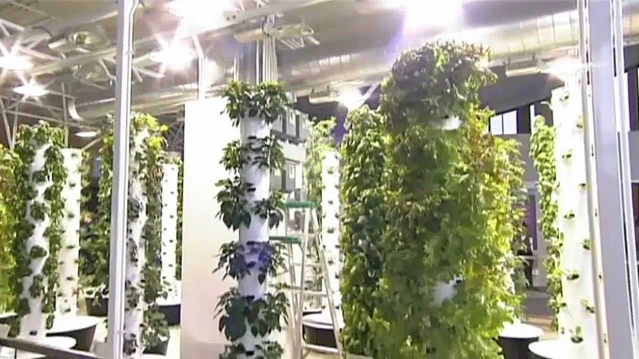 Future Growing® Tower Garden® Farm At Ou0027Hare International Airport, Make  Sure