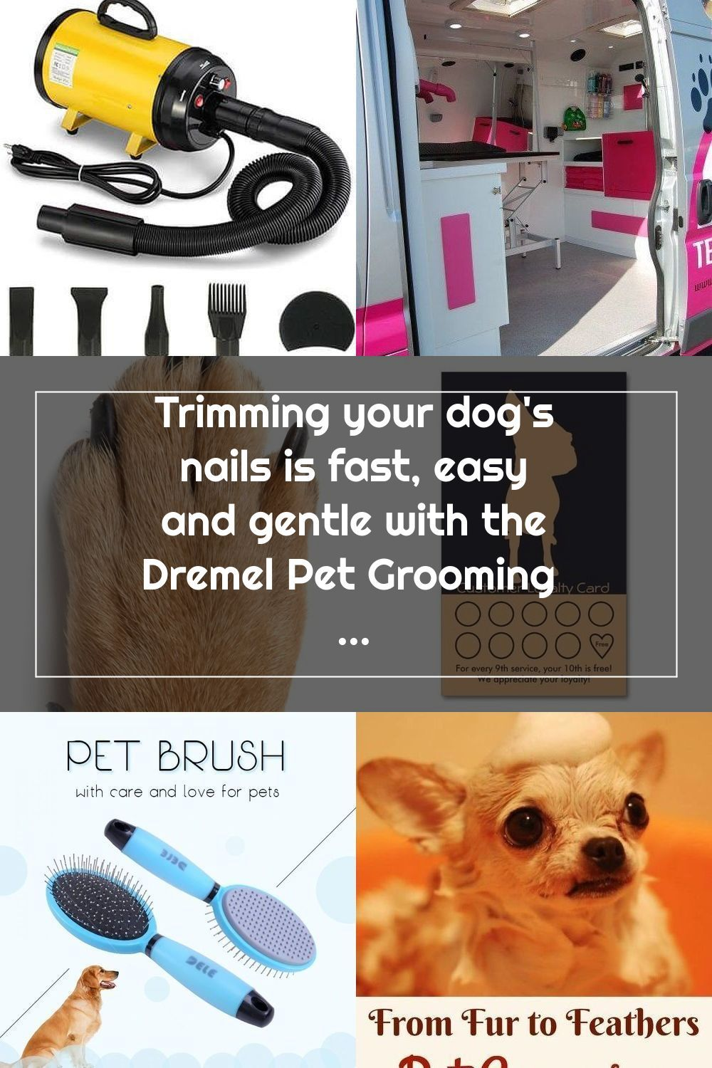 Trimming your dog's nails is fast, easy and gentle with