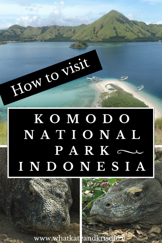 Visiting Komodo National Park to see the Komodo dragons on Rinca and Komodo was a dream come true! It was hard to find detailed information on How to visit Komodo National Park, Indonesia, including where to stay in Flores, food in Flores and tours to Komodo and Rinca. #komodo #flores #komododragons