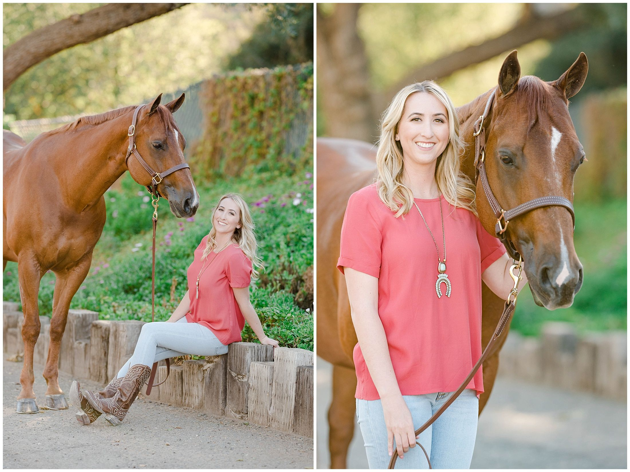 Bronson And Samantha Equine Photography Western Pleasure Gelding